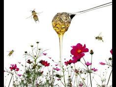 Dosatore miele - Alessi