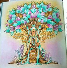 Enchanted Forest Book Supernatural Colouring In Costumes Books Flower Illustrations Haunted Aquarium