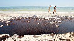oil-beach.jpg (630×354)