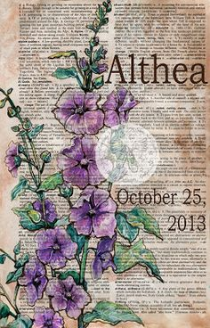 Althea (Hollyhock Flower) Personalized Baby Name Mixed Media Drawing on Distressed, Dictionary Page - flying shoes art studio