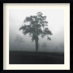 Title: Fog Tree Study I by Artist: Jamie Cook Framed Art Print