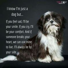I know I'm just a dog but...