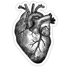 I have same design with red : / http://www.redbubble.com/people/stilleskygger/works/21875594-vintage-heart-anatomy?asc=u / I have other anatomical designs in here to you might be interested : / https://www.redbubble.com/people/stilleskygger/works/21905796-anatomical-heart-diagram-goth-black?asc=u&p=acrylic-block&ref=artist_shop_grid / https://www.redbubble.com/peo...
