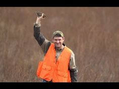 Man Catches Flying Bird with Bare Hand Quail Hunting with Colt McCoy