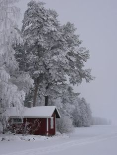 The quiet solitude of a Finnish winter. With Christmas pudding and plum pie. Ah, the joys of living Winter Love, Winter Snow, Winter White, Snow Scenes, Winter Scenes, Life Is Beautiful, Beautiful Places, Snow Pictures, Winter Magic