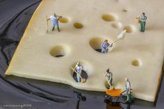 Fantastic image. Swiss Cheese hole diggers.