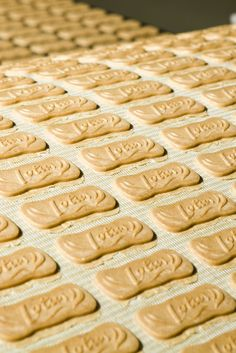 NYT Cooking: Here is a recipe for the St. Nicholas Day treat (also called speculoos or Dutch windmill cookies) enjoyed in Belgium and the Netherlands. They are traditionally molded into the shape of windmills, but these crisp, almond-y spice cookies will turn out well if you roll out the dough and cut out any shape you like. This version is an adaptation of one found in Anita C...