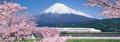 Mt. Fuji and Shinkansen 冨士山と新幹線 桜編