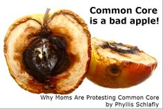 Why Moms Are Against Common Core by Phyllis Schlafly