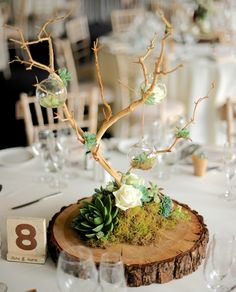 One Of The Table Centers With Little Hanging Glass Globes, Some Filled With Flowers And Others With Tea Lights. The 'Trees Were Made From Bleached Manzanita Branches, Which Are Imported From California. Wooden Centerpieces, Succulent Centerpieces, Table Decorations, Masculine Centerpieces, Wood Slice Centerpiece, Centerpiece Wedding, Branches Manzanita, Deco Champetre, Country Wedding Decorations