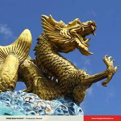 Dragonul are puterea de a absorbi apa și totodată de a o slobozi, fiind regele oceanelor. Acesta este motivul pentru care împărații antici obișnuiau să se roage Zeului Dragon să aducă ploaia pe vremuri de secetă sau să oprească ploile pe timp de inundații. El transmite energie și generează putere sub formă de anotimpuri, aducând apă sub formă de ploi, căldură de la razele soarelui, vântul de pe mări și solul din pământ. Feng Shui, Lion Sculpture, Statue, Sculptures, Sculpture
