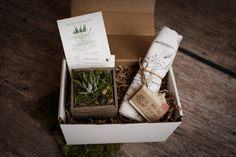 Sprout the gift of giving! Eco-friendly, natural gift boxes for various occasions. Every box includes a succulent or air plant and up to two personal gifts. Send a warm welcome box to a new home owner! New Homeowner, New Home Gifts, Air Plants, New Beginnings, Giving, Sprouts, House Warming, Personalized Gifts, Eco Friendly