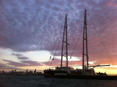 At sunrise on Tuesday of March, the beautiful new Greenpeace ship, The Rainbow Warrior, arrived in Melbourne! (c) Greenpeace Rainbow Warrior, Sailing Ships, Melbourne, Tuesday, Sunrise, Around The Worlds, March, Boat, Australia