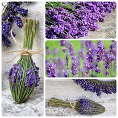 Wonderful ideas for the lavender season Lavender Wands, Lavender Crafts, Lavender Wreath, Lavender Fields, Lavender Flowers, Dried Flowers, Lavender Bouquet, Nature Crafts, Garden Crafts