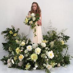 Indoor garden #bowsandarrowsflowers #froufrouchic