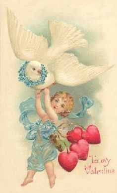 Old postcard for Valentines with white dove!