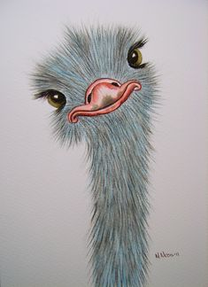 Silly Ostrich watercolour | Ostrich portrait painted by Mari… | Flickr