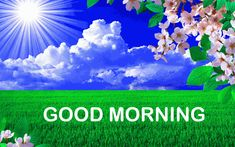 Good Morning Dear Friend, Cute Good Morning, Good Morning Photos, Good Morning Wishes, Morning Quotes, Hd Wallpaper, Gallery, Beautiful, Buen Dia