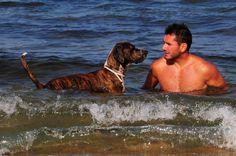 Este es mi perro y yo disfrutando de un dia de tantos que vamos a la playa. Lo encontraron en la calle en un contenedor, es un cruce de alguna raza de presa con alguna de caza, es lo mejor que me ha pasado en la vida. El mejor perro del mundo. (JUAN SALAZAR).