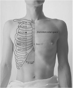 KID-25 Spirit Storehouse SHENCANG - Acupuncture Points -1