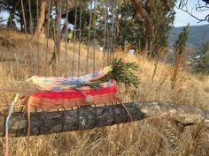 loom in a tree #LoomObsession