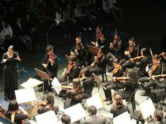"""A Orquestra Experimental de Repertório (OER) e a Orquestra Sinfônica Jovem Municipal (OSJM) participam do """"Projeto União Sonora"""" e realizam concerto na Sala do Conservatório."""