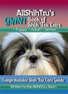 Learn About The Prestigious Toy Dog The Shih Tzu Complete And