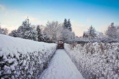 Vinter i Præstø's kolonihave. #praestoe