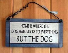 Oh dog hair :)