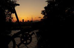 No.208 / ©Kei / DAHON Curve D7 2014 / 富士山と東京スカイツリーと夕焼けと自転車が重なるシーンを撮影しました。寒かったです。