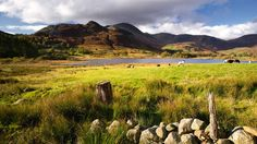Lake District, Cumbria.