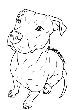 Free Pit Bull Line Art 10 by Wolfie-Undead.deviantart.com on @DeviantArt