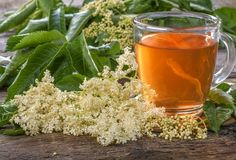 These Wild Medicinal Plants are very common and easy to find. They are also very safe and effective as herbal medicine. Tea Benefits, Health Benefits, Influenza, Elderflower, Medicinal Plants, Herbal Medicine, Herbal Remedies, Herbalism, Alcoholic Drinks