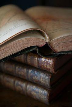 Chi accumula libri accumula desideri; e chi ha molti desideri è molto giovane, anche a ottant'anni. (Ugo Ojetti)