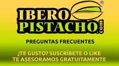 ¿Existen subvenciones para el cultivo del pistacho? - Preguntas Frecuent...