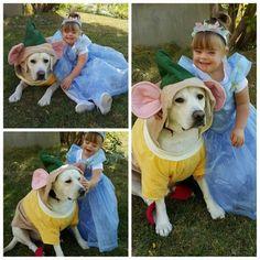 Sadie & Hero (3)