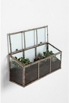 Love terrariums... finally I'll have a living room that will be perfect for one. (Urban Outfitters)
