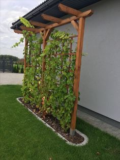 Front Yard Landscaping, Backyard Patio, Landscaping Design, Mulch Landscaping, Courtyard Landscaping, Front Yard Patio, Natural Landscaping, Natural Fence, Backyard Seating