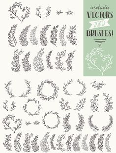 Whimsical Laurels & Wreaths Clip Art - https://www.designcuts.com/product/whimsical-laurels-wreaths-clip-art/