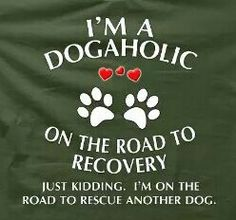 Dogaholic till the day I die!