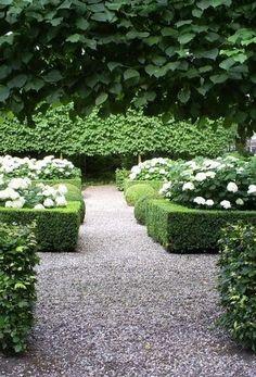 Green & White Garden
