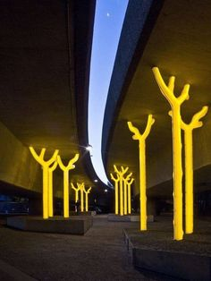 Glowing Trees Outdoor Lighting - iD Lights Design Lamps - A glowing golden forest of trees called Aspire by artist Warren Langley, illuminates a site beneath the Western Distributor at Ultimo, Sydney on May 20 Tree Lighting, Outdoor Lighting, Pathway Lighting, Backyard Lighting, Urban Landscape, Landscape Design, Landscape Architecture, Interior Architecture, Classical Architecture