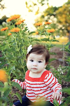 6 month baby picture ideas   Lauren's 6 month session « Jillian Farnsworth Photography: the BLOG