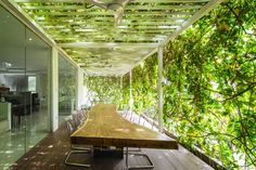 airmas asri architects add greeneries to their new expanded offices in jakarta