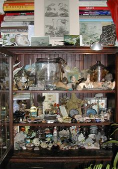 Cabinet of Curiosities...I need one of these.