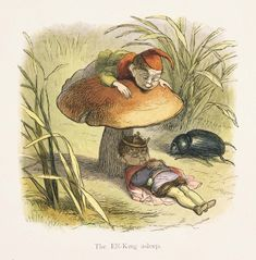 Box Canvas Print (other products available) - A vintage fairyland image featuring the Elf King sleeping under a toadstool mushroom with an elf and beetle watching from nearby. - Image supplied by Fine Art Storehouse - inch Box Canvas Print made in the UK Fine Art Prints, Canvas Prints, Framed Prints, Richard Doyle, Elf King, Elves And Fairies, Children's Book Illustration, Illustrations, Fairy Land