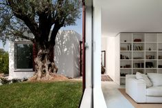 Casa Agostos - Faro  Pedro Domingos Arquitectos