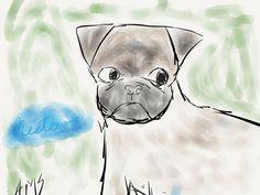 Drawing pugs