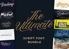 Start your new year off right with The Ultimate Script Font Bundle!We've packed together just about ...