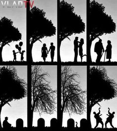 Zombie Love Evolution